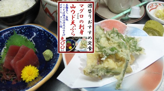 shugawari20170508